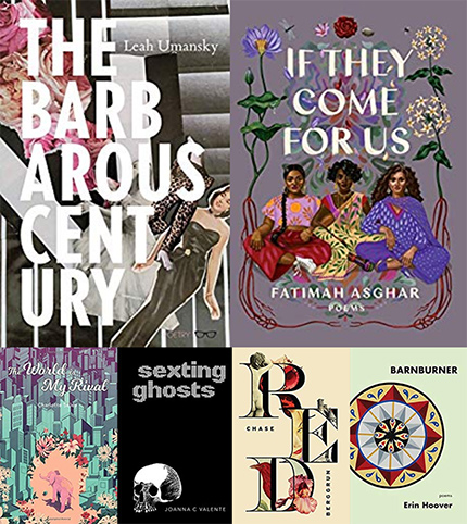 Largehearted Boy's Favorite Novels of 2017
